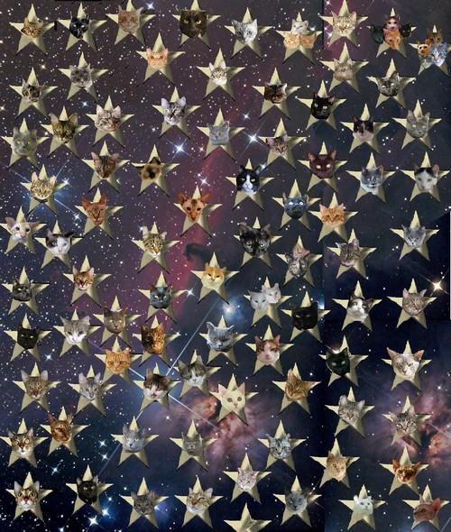 My jsme vaše hvězdy!